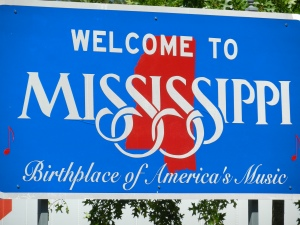 Welcome to MS